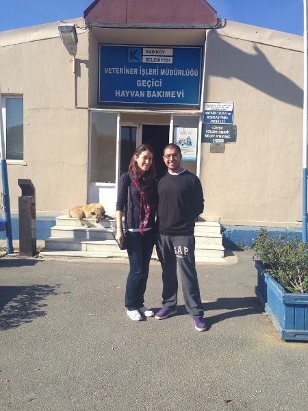 10.11.2013 / Ataşehir Hayvan Barınağı Mama Yardımı